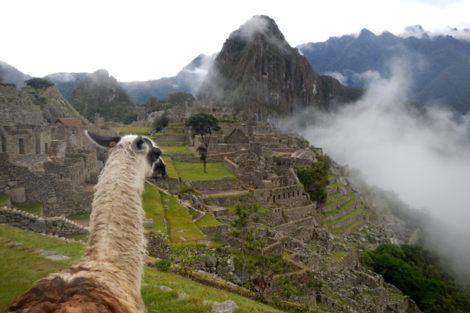 Cusco: Conde Travel Adventures Jungle Trek to Machu Picchu