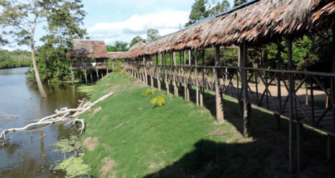 Iquitos: Maniti Expeditions Amazon Tour