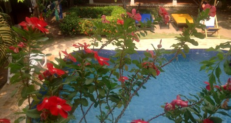 Santa Marta: Dreamer Hostel
