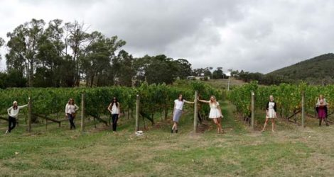 Margaret River: DIY Wine Tour