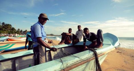 Arugam Bay: Reel in the Day's Catch