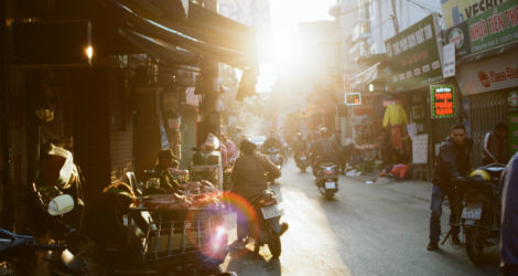 My Path to Healing in South-East Asia (With the Help of a Few Stray Mutts)