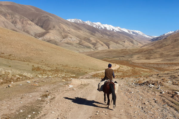 Horse Trekking a Country Under a Trump Travel Ban
