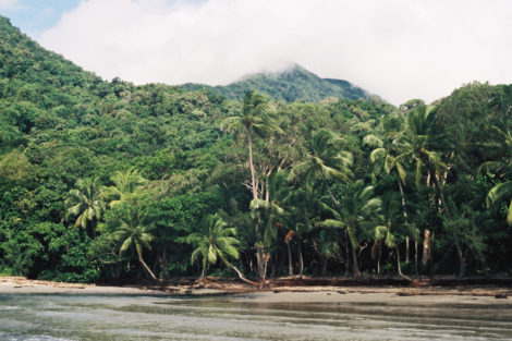 Do a Writing Workshop in Tropical North Queensland